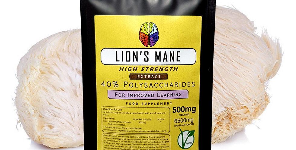 Lion's Mane Mushroom 40% Extract (500mg Capsules)