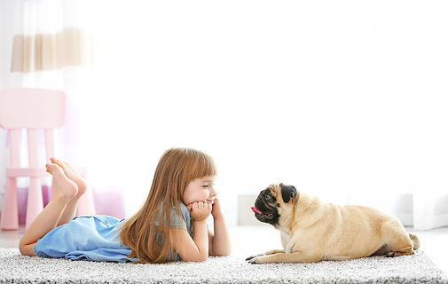 Cute girl playing with dog on carpet.jpg
