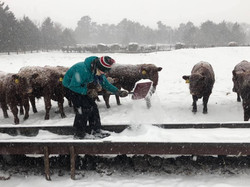 Snow Day for Ranch Kids