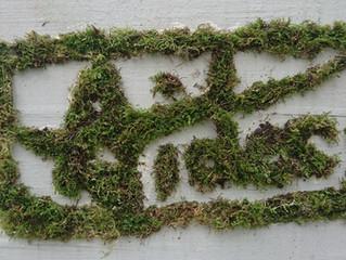 Graffitis végétaux