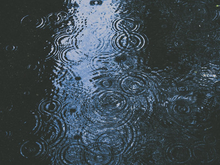How to Prevent Heavy Rain Damage