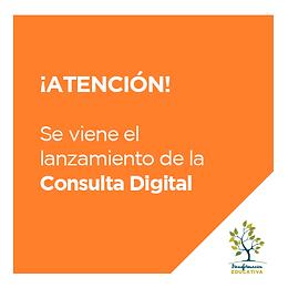 Lanzamiento de la Consulta Digital