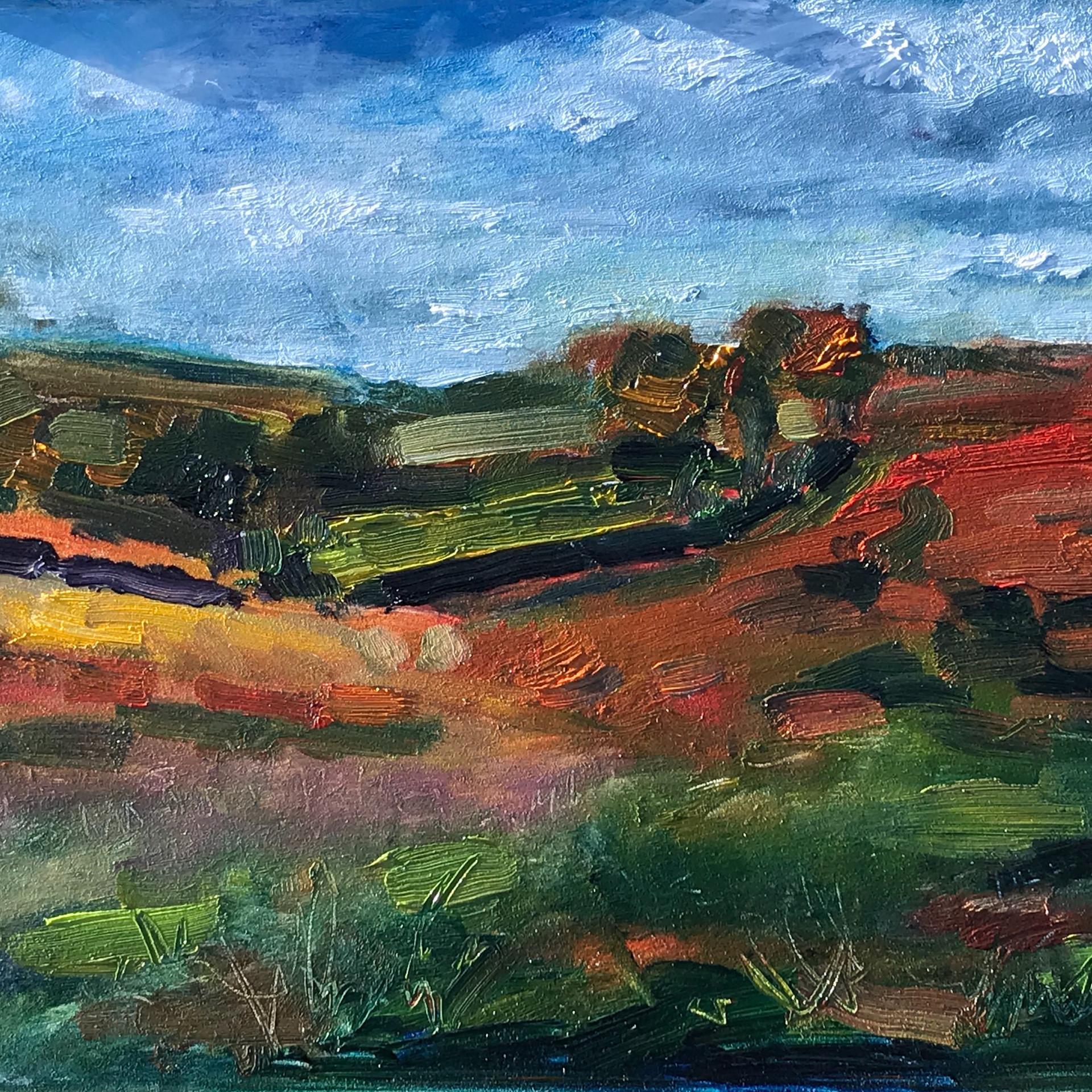 Autumn Colours on Exmoor