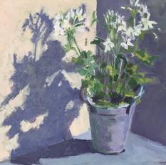 White Flowers Purple Shadows