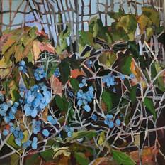 Mahonia, Autumn Leaves & Rickety Fence