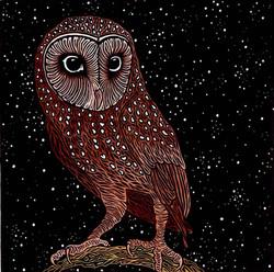 Julie Hanrahan - Sooty Owl