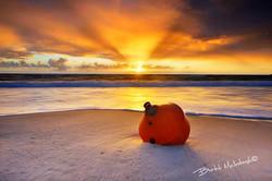 Brett-McIntosh-Rainbow-Beach---Rise-and-