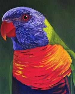 LynDonald-Colours-of-the-Rainbow