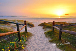 Brett-McIntosh--Mudjimba-Beach