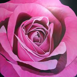 LynDonald-The-Colour-Of-Love