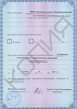 детская лицензия 2.jpg