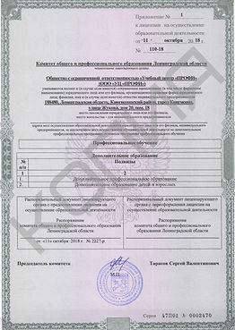 детская лицензия 3.jpg