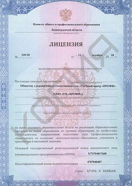 детская лицензия 1.jpg