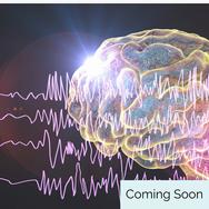 Brainwaves 101