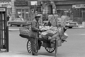 Mobile Canteen, History of the Food Trucks, Food Truck, Pushcart, Ice-Cream Trucks, Roach Coaches, USA, Food Revolution, Mobile Dining, Street Food, Cookery, Eatery, Gourmet Food Truck, Kin Taco, Chuck Wagon, Street Vendor, Harlem, NYC, Street Market, New York, Street Salesman