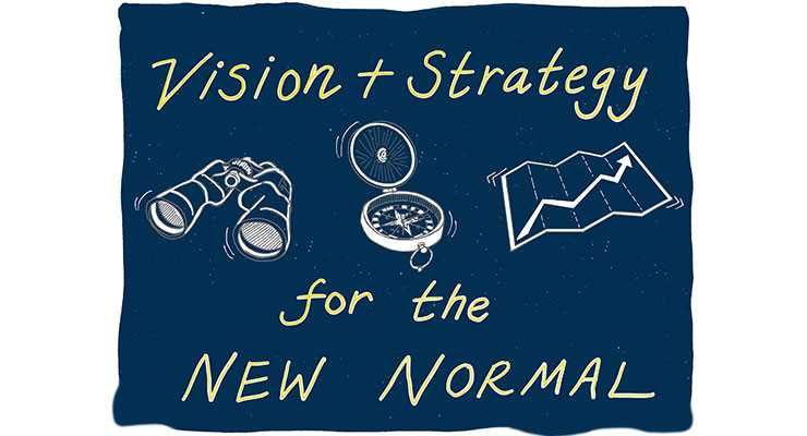Vision and Strategy?