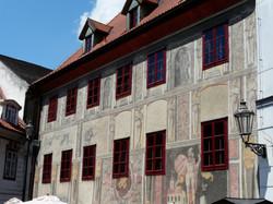 Krcin's house