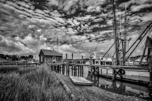 Low Country B&W