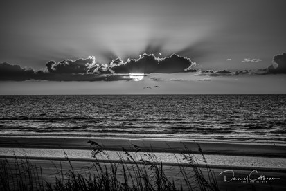 Low Country-5.jpg