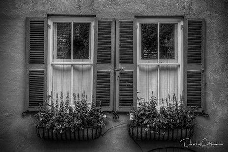 Charlestonian windows