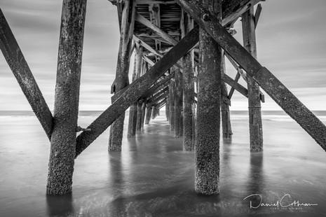 Beneath the Isle of Palms Pier