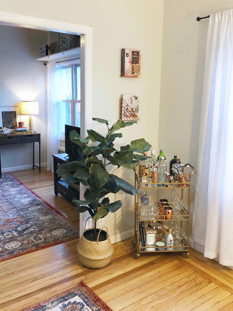 Bar Cart & Living Room