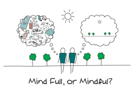 Mind full? Try a stress busting mindful walk