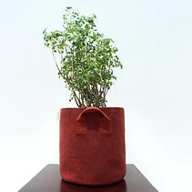 Grow bags 12x12.png