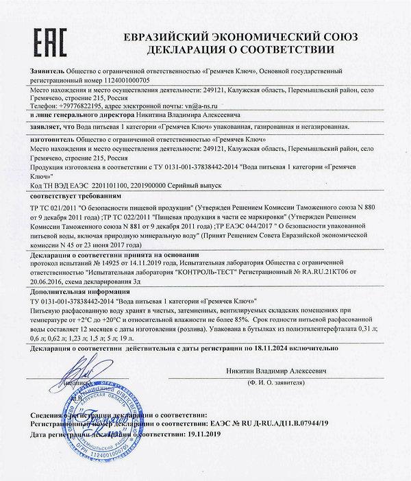 Декларация Гремячев Ключ1_edited.jpg