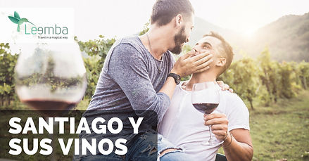 Gay_Travel_Chile_Santiago_El_Divino_Viñe