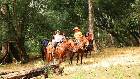 Tour de Caballos Canopy River 3.jpg