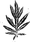 Logo Beifuss.png