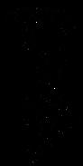 Logo Frauenmantel.png