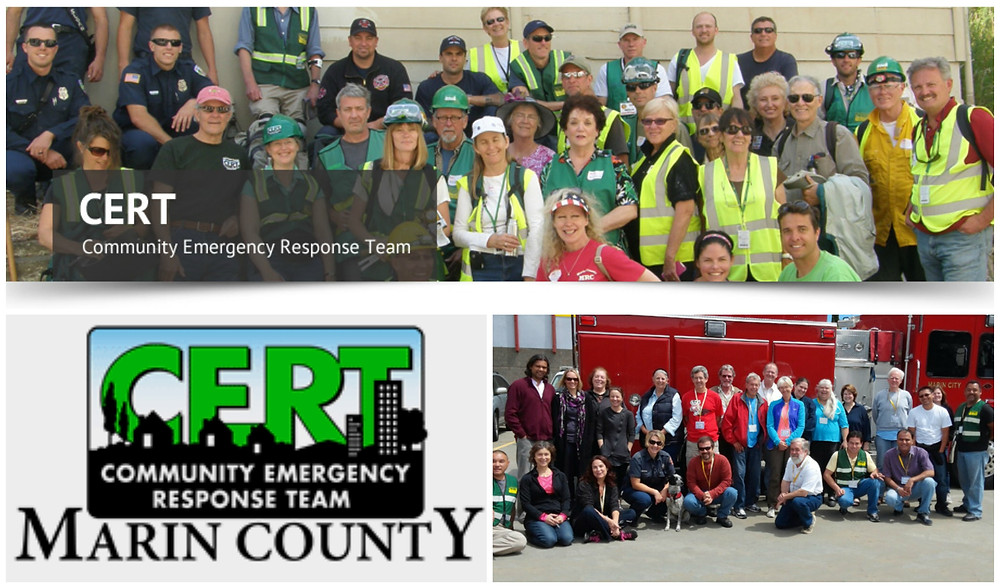 Cert PicMonkey Collage.jpg