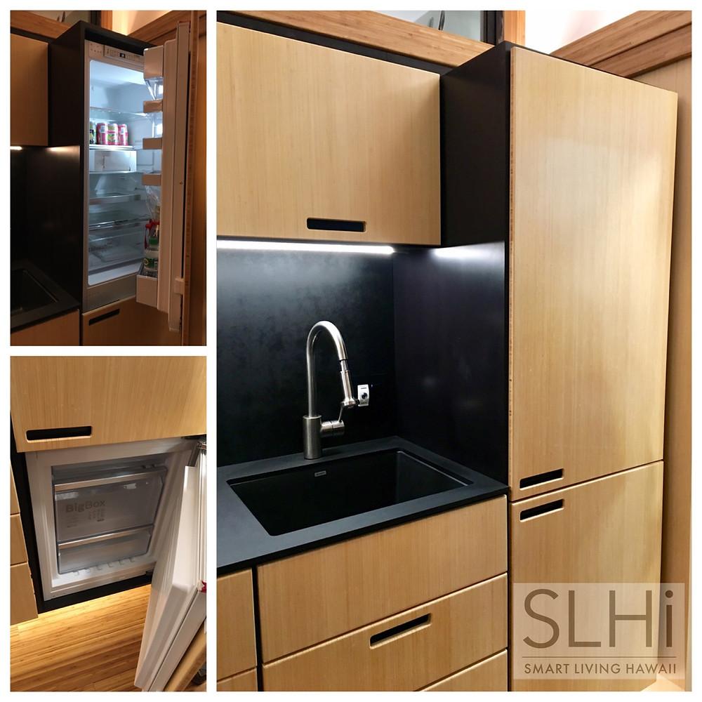 Kitchen: Hidden Appliances