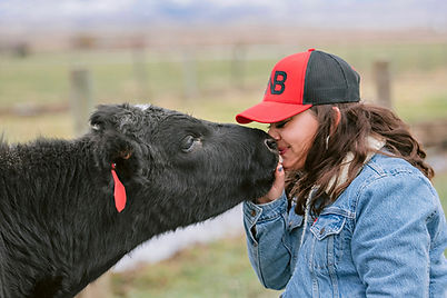 Girl in red hat and Levi Jacket Cattle for Sale touching noses with a black calf, cattle for sale near me, red eartag