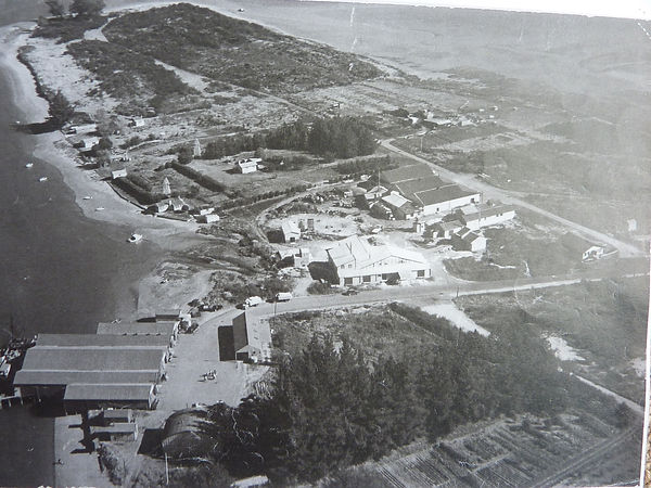 180731 Mapua Aerial 1950s.JPG