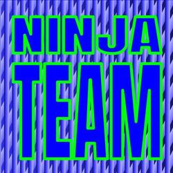 Ninja Logic Ninja Team