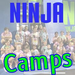 Ninja Camps Winter & Summer