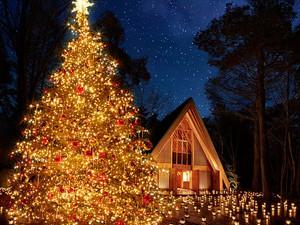 ラストクリスマスキャロルが今年もやって来る 5