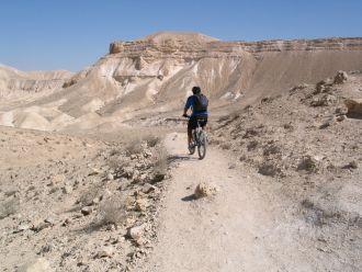 Desert MTB.jpg