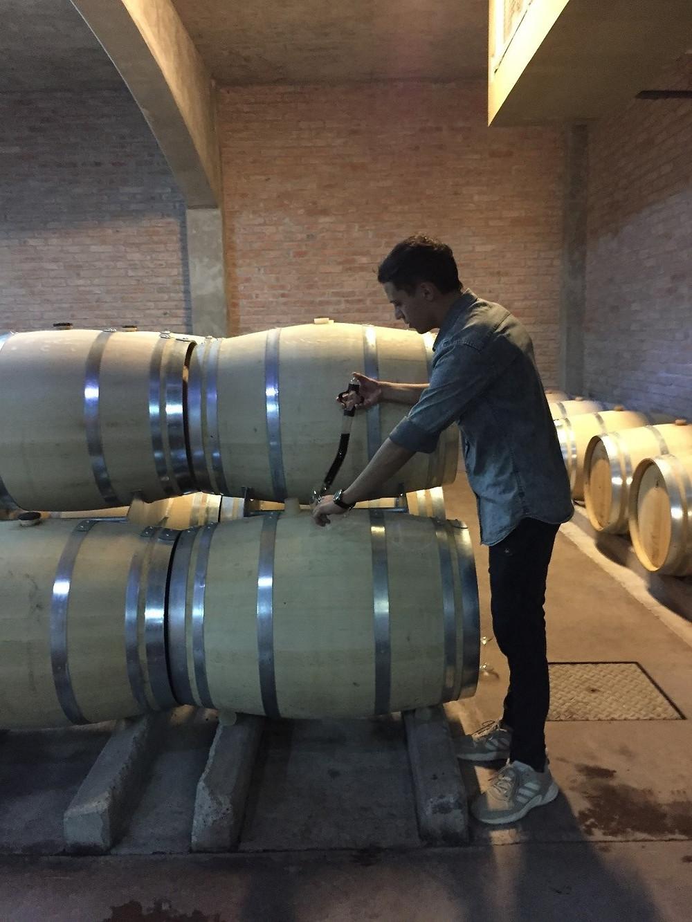 Uco Velley Wine