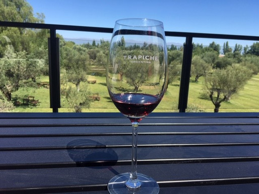 What We Learned About the Wine of Maipú