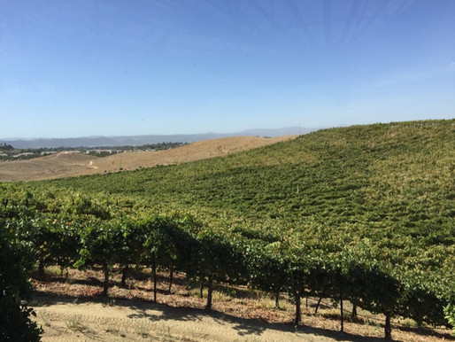 Exploring Temecula Valley Wine Country