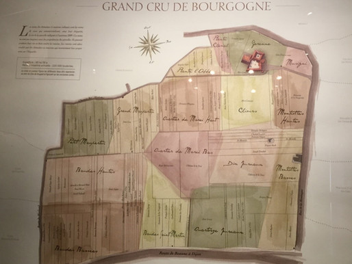 How to Prioritize Your Burgundy Wine Experience