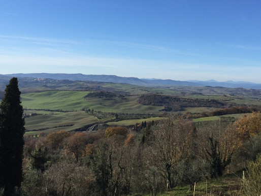 Discovering the Wine of Montalcino and Montepulciano