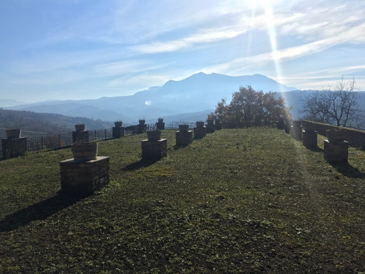 Discovering the Food and Wine in Campania