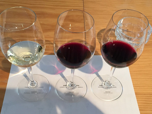 5 Tips to Consider When Choosing a Wine Tour
