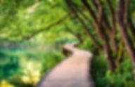 Zen pause 9.jpg