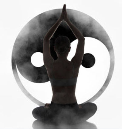 Symbole du yin et yang.jpg